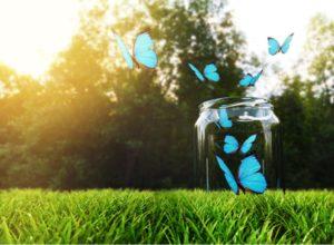 Fase2: come ripartire? Farfalle escono da barattolo
